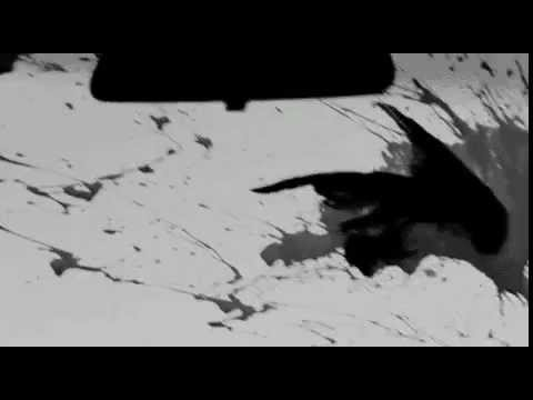 BL▲CK † CEILING - WVFFLIFE (SECONDS APART crow moment)