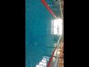 50 метров брас