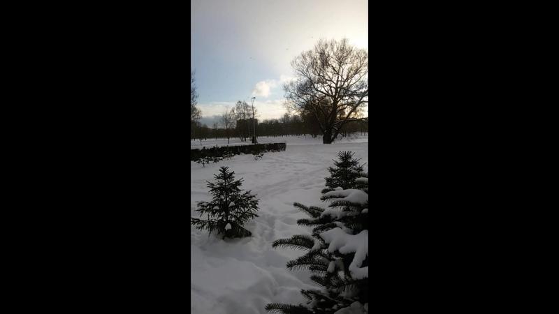 хлопья снежные