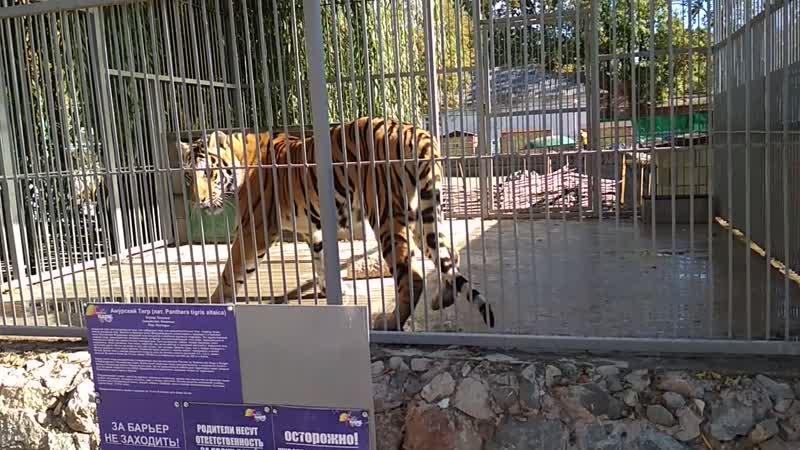 Симферопольский зооуголок