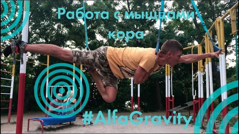 AlfaGravity | Проработка мышц кора | Вис животом вниз.