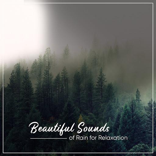 Rain альбом 21 Sounds of Nature: Rainforest Downpours & Thunder