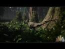 The Isle - Работа над освещением в биоме Redwood
