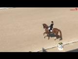 Bella Rose  Isabell Werth CHIO Aachen CDI4 GP