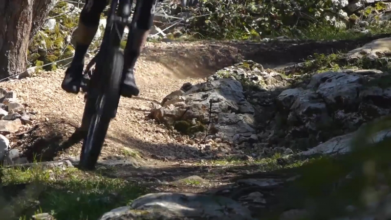 The Best Downhill MTB Motivation - Best Of 2018