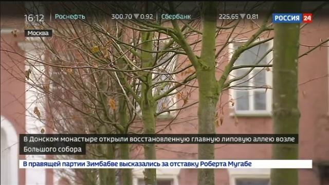Новости на Россия 24 • В Донском монастыре высадили липовую аллею
