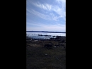 прогулки по берегу моря
