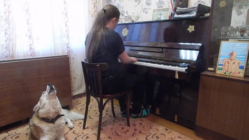 Музыка - единственный всемирный язык, его не надо переводить, на нем душа говорит с душою. Бертольд Ауэрбах