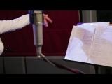 Алена Андерс и аккустический оркестр - Вояж, вояж