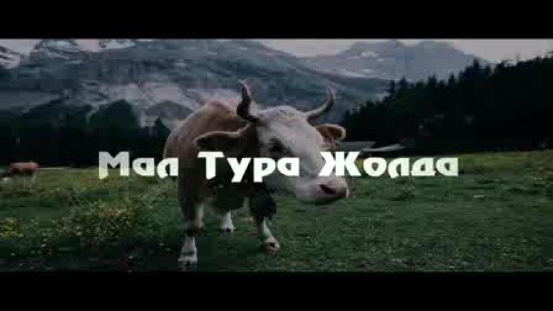 Мал тура жолда Ерлан Ақатаев