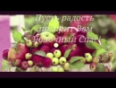 С Яблочным Спасом поздравляю! 19 августа. С Преображением Господним! Очень красивая музыкальная виде.mp4