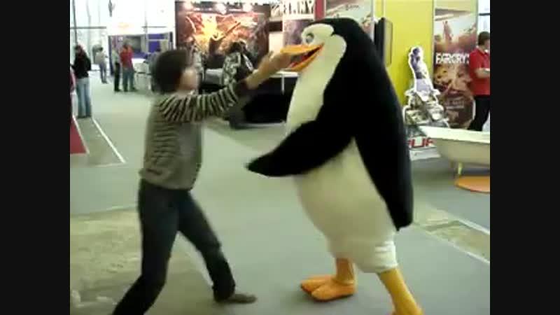 Был отпизжен пингвином)