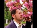 Поэт Сергей Мырдин читает своё стихотворение про ужгородскую сакуру на домашнем концерте.