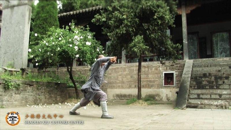 Chao Yang Quan - Shifu Yan Chao