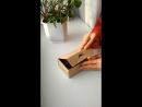 коробочка и шишки метасеквойи
