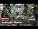 Новости Уфимского района за 7 августа (Иглино, Кармаскалы, Языково)