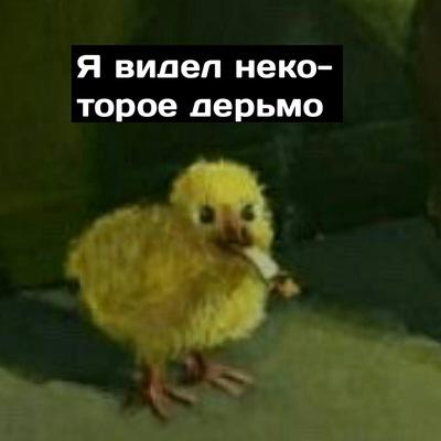 Феликс Громов