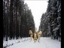 Север. Дорога на Ворзогоры. Природа-2017год.