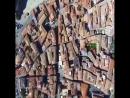 Вот она красота Колибрии Италия