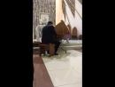 Клавесин 3