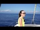 [Elli Di] ПОСЛЕДНИЙ ДЕНЬ МЫ ИСЧЕЗЛИ В МОРЕ Бермудский Треугольник ВОСЬМОЙ ДЕНЬ ЯХТА ЭЛЛИ ДИ 16 | Elli Di