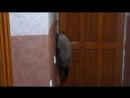 Тая пытается открыть дверь и уйти
