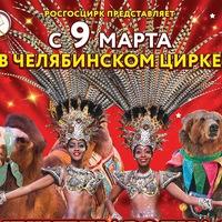 chel.circus