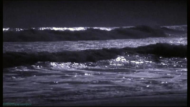 BBC Голубая планета 1 Голубая планета Познавательный природа животные 2001