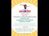 УТС по художественной гимнастике .Под руководством Натальи Соколовой и Натальи Зуевой