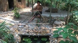 Primitive LifeFilter System for Fish Pond!