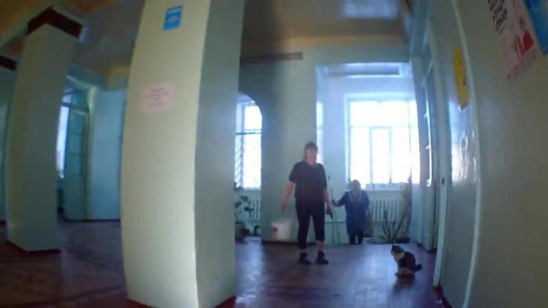 [Vasya Sheblanov] Руферы неудачники|Приняли на крыше