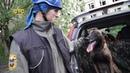 Воспитать собаку для спасения человеческой жизни