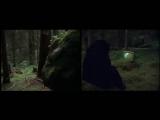 Sagor Swing In i skogen