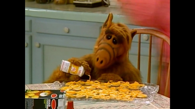 Alf Quote Season 1 Episode 5_Альф и Кейт