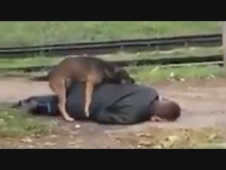 Horny Dog Hump Passed Out Drunk Man!