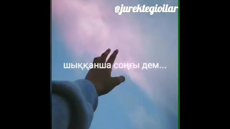 Qarakesek_fan_Be3BsHzjy-i.mp4