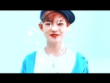 little sunshine~ chenle. nct to the world