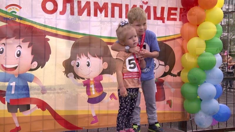 2019 год в Ленинградской области объявлен годом ЗОЖ