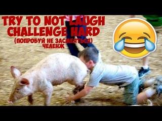 ПОПРОБУЙ НЕ ЗАСМЕЯТЬСЯ ЧЕЛЕНДЖ №1 (try to not laugh challenge hard)