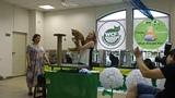 24.06.18 Фан-шоу сборная котов 7 мес.Orpheus Rysenok 9 место