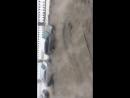 Прорыв трубы на  канале Грибоедова