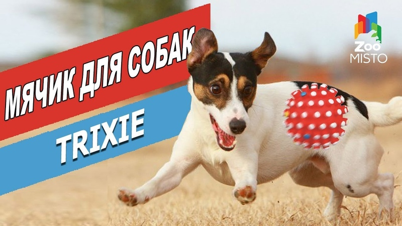 Мячик для собак - Трикси Ежик | Обзор мячика для собак от Трикси | Trixie ball for dogs review