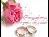 с днём свадьбы,дорогие Саша и Аня.