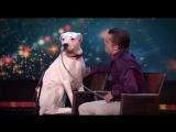 Собака поёт под песню Уитни Хьюстон