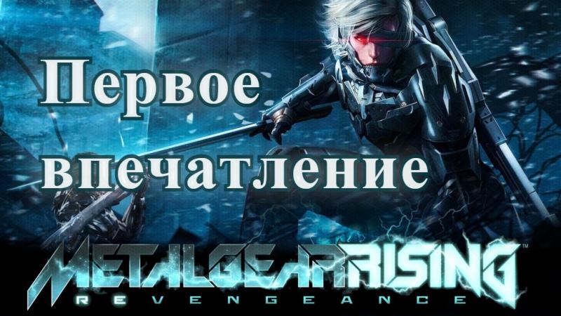 (18) Слышал, тут фарш просто... [Metal Gear Rising: Revengeance]