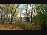 Joe Dassin - L ete indien (Осень в Торкельском парке)