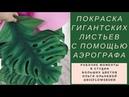 Покраска гигантских листьев для экзотических цветов с помощью аэрографа. Мастер-класс Ольги Ольневой