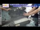 蒸發器(風箱仁滲漏)拆裝更換 BENZ W140 S320 3.2L 1993_ 140.032 722.502