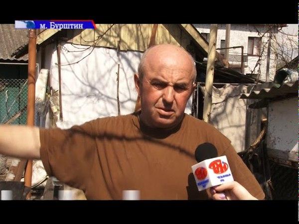 Чупакабра в Бурштині задушила 6 кролів