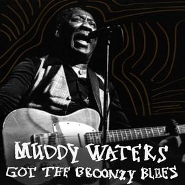 Muddy Waters альбом Got the Broonzy Blues